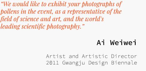 Statements-Aiweiwei-1